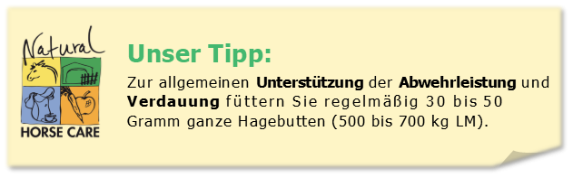 Unser Tipp:  Zur allgemeinen Unterstützung der Abwehrleistung und Verdauung füttern Sie regelmäßig 30 bis 50 Gramm ganze Hagebutten (500 bis 700 kg LM).