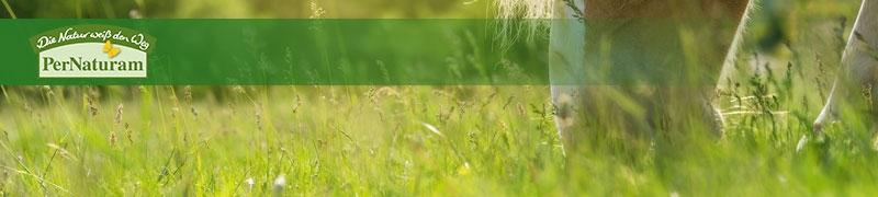 PerNaturam - führender Hersteller für Kräutermischungen für Pferde