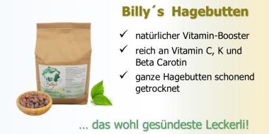 Ein natürlicher Vitamin Booster - Billy´s Hagebutten.