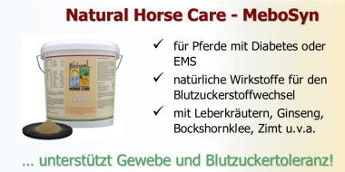 Zur ernährungsphysiologischen Unterstützung bei Pferden mit Equinem Metabolischen Syndrom (EMS).