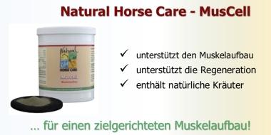 MusCell - ein Ergänzungsfutter für einen gezielten Muskelaufbau bei Pferden