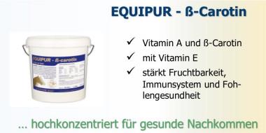 Equipur beta carotin - für Stuten Hengste und Fohlen