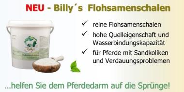 Billy´s Flohsamenschalen sind vielseitig bei Sandkoliken oder Darmproblemen einsetzbar.