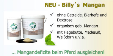 Manganmangel für das Pferd - ausgleichem mit Billy´s Mangan. Ohne Getreide, Bierhefe und Dextrose.