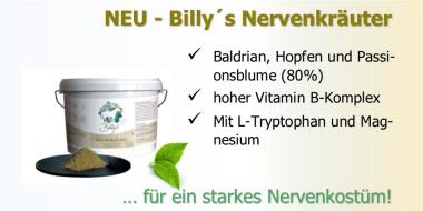 Nierenkräuter mit Tryptophan - Nervennahrung für das Pferd