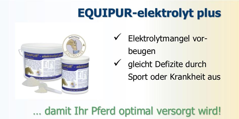 Elektrolyte müssen Pferden zugefüttert werden, wenn sie übermäßig schwitzen