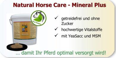 Schlechtes Blutbild beim Pferd - Überprüfen Sie die Mineralstoffverorgung.