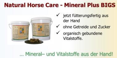 Mineral Plus BIGS - Mineralfutter für Pferde aus der Hand füttern