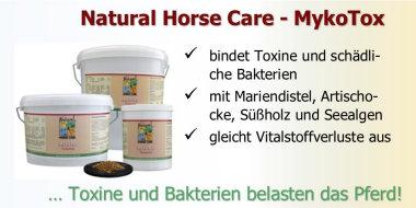 Toxine im Darm der Pferde binden und Darmbarriere aufbauen!