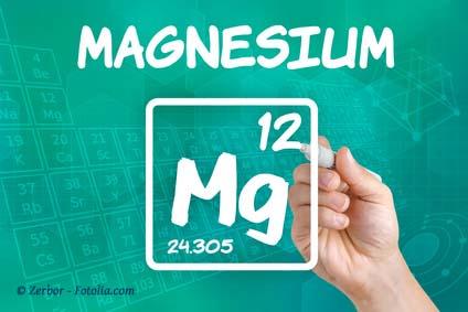 Magnesium beim Pferd. Ein Mangel macht Pferde schreckhaft