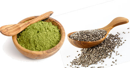 Die hochwertigen und nativen Wirkstoffe des Chiasamen und Meerrettichbaumes (Moringa) unterstützen das Immunsystem des Pferdes